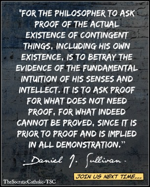 Daniel J. Sullivan on Proof of External Reality